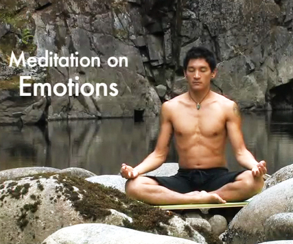 Meditate on Emotions