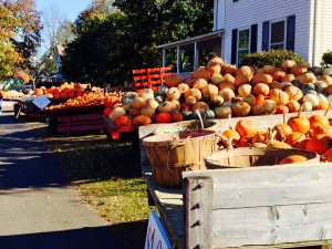 BIrthday-Pumpkins